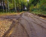 Jak powstają leśne drogi