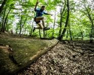 Forest Run - 44 i 23 kilometry w Wielkopolskim Parku Narodowym