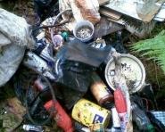 Śmieciarze w lesie